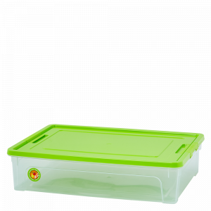 "Контейнер ""Smart Box""  5,5л. ""Practice"" (_пр./оливк./оливк.)"